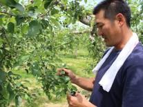 持続的な農業経営を目指す