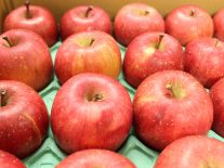 あおもり リンゴは今年は「ネット購買」がお得な理由!